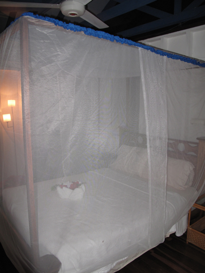 The house, like most in the area, was not air conditioned, so each night we opened up all the windows and turned on the fans.  The bed was really comfy, and the mosquito net was completely appropriate!  We didn't get a single bite.