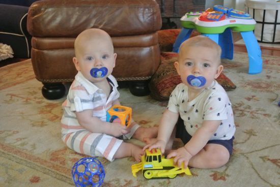 Blue pacis are so hot right now.... practicing being big boys with Duke.
