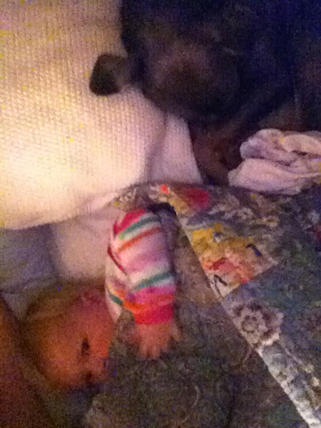 Nursing under the covers with Tough Puppy cuddled behind her.