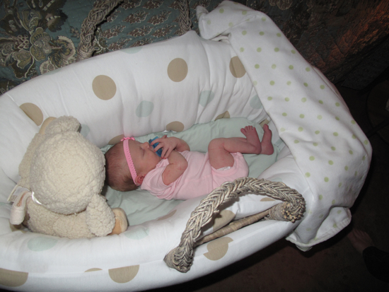 Flashback!  Poppyseed snoozing in the Moses basket.