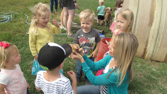 Christy was brave enough to show the kids how to gently handle some of the birds.  The kids LOVED it!
