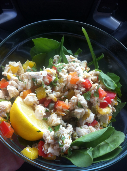 Paleo chicken salad on a bed of spinach.